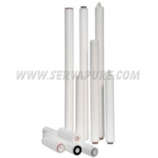 All Poly & High Purity Cartridges