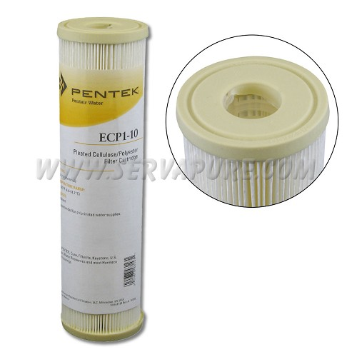 Pentek 255481, ECP1-10 Pleated Cellulose-Polyester